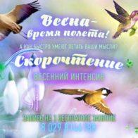 скорочтение Витебск